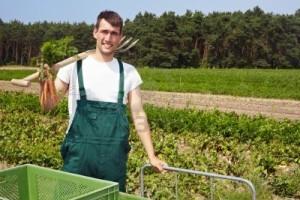 kredyt rolniczy